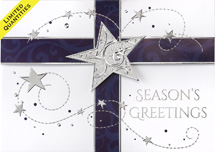 Star Sprinkled Gift Holiday Greeting Card